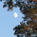 Holdas napsütés