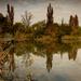 Veresegyház, tó