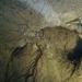 Gyökerek a föld alatt