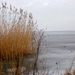 Befagyott Fertő tó borús időben