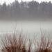 Ködpárna a befagyott tó felett