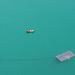 Album - Bledi-tó