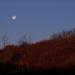 égi fények, a Hold megy a Nap jön